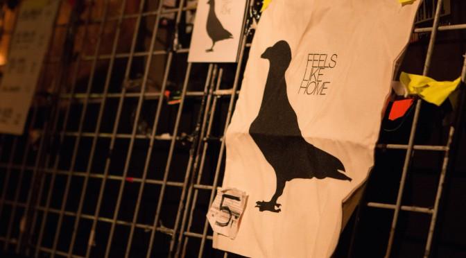 Das Täubchen fliegt wieder – Mit Feels like Home #8 über Hamburg
